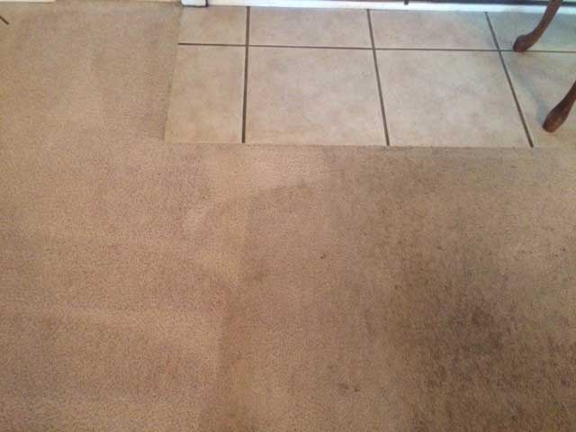 Carpet Cleaning Before and After Photo 4