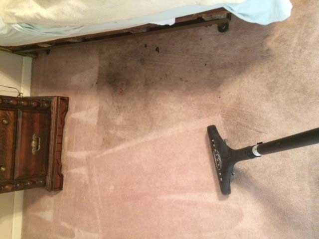 Carpet Cleaning Before and After Photo 5