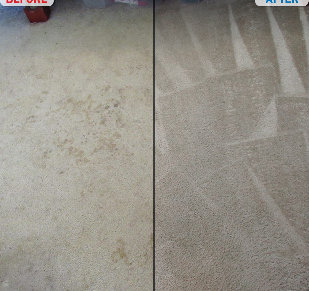 Bedroom Carpet Before and After Photo 1