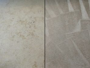 Carpet Cleaning Before and After Photo 6