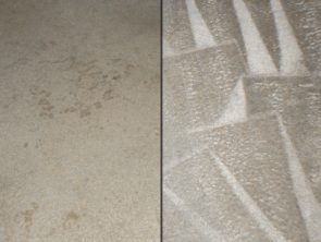 Carpet Cleaning Before and After Photo 7