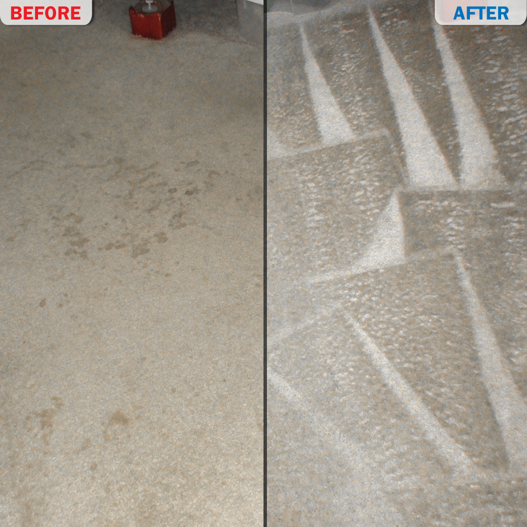 Carpet cleaning before and after photo 7 crispy clean for Before and after flooring