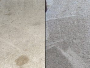 Carpet Cleaning Before and After Photo 8